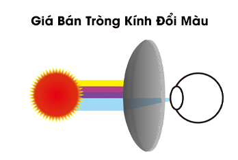 Tìm hiểu các loại tròng kính đổi màu đang HOT hiện nay ...