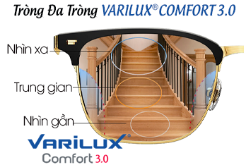 Kính Đa Tròng VARILUX® COMFORT Dành Cho Ai ?