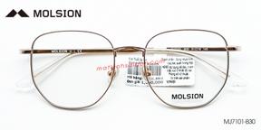 Gọng Kính B-Titanium Molsion MJ7101-B30