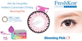 Kính Áp Tròng Freshkon Colors Fusion 3 Tháng Blooming Pink C5