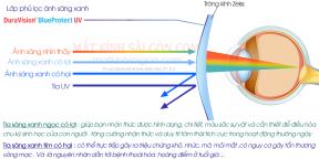 TRÒNG KÍNH LỌC ÁNH SÁNG XANH 1.67 ZEISS DuraVision BlueProtect UV